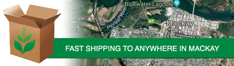 mackay-shipping.jpg