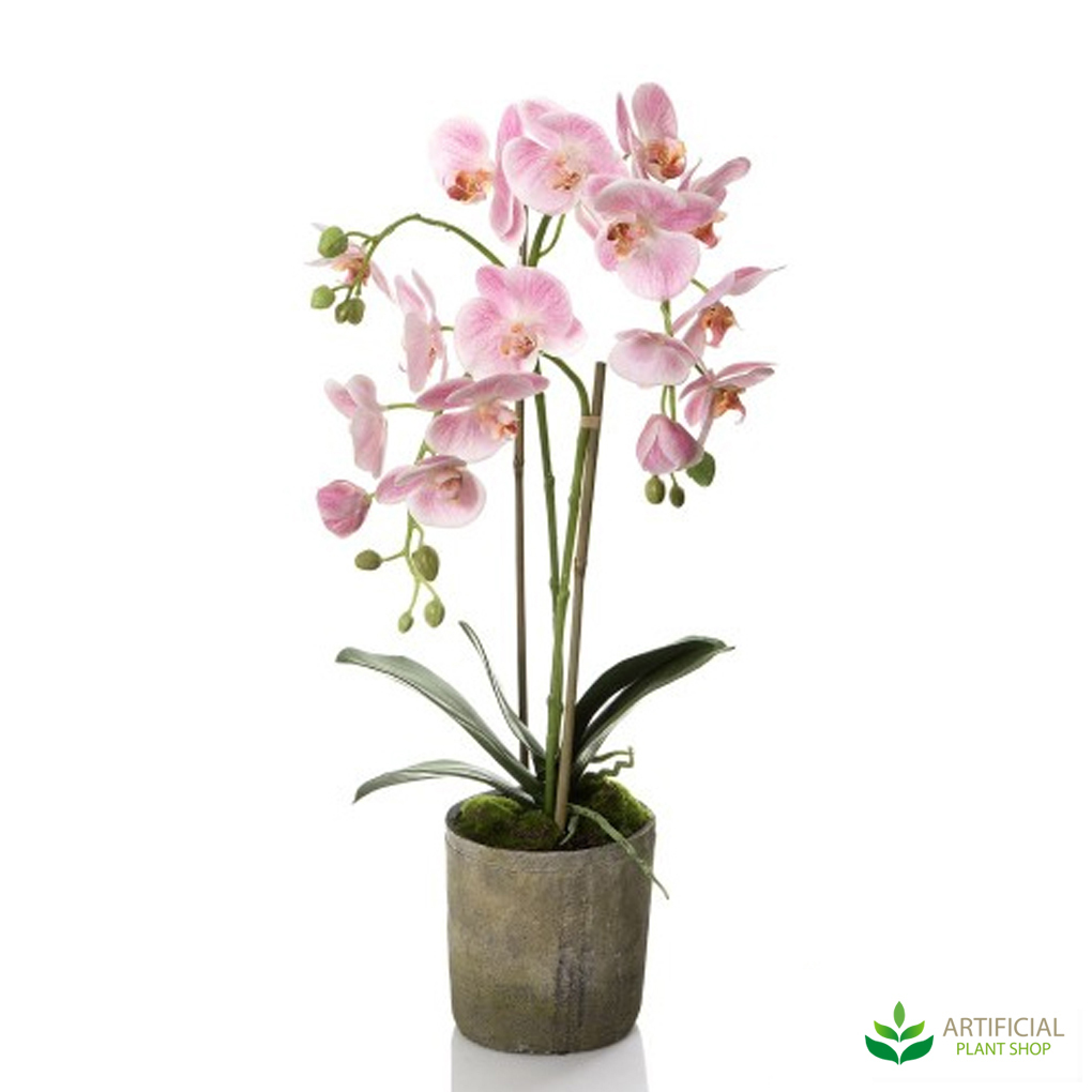 Pink Fake Orchid in Terracotta Pot