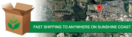 sunshine-coast-shipping.jpg