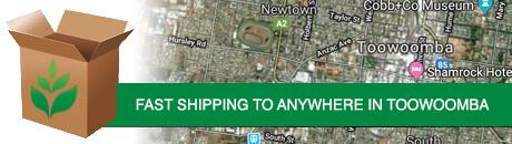 toowoomnba-shipping1.jpg