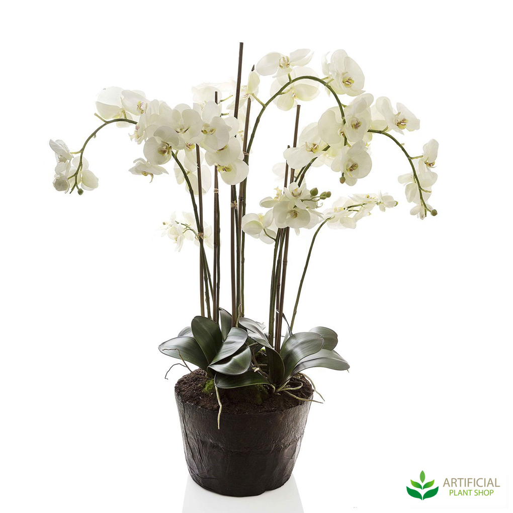 Large White Artificial orchid in paper pot