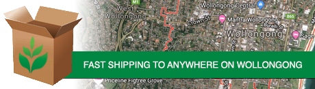 wollongong-shipping.jpg