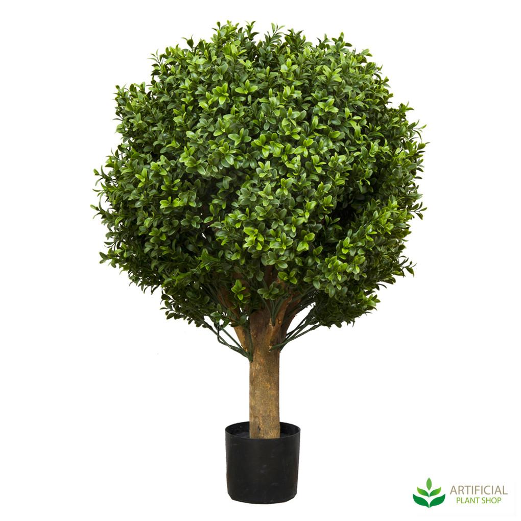 Boxwood Ball Topiary 65cm