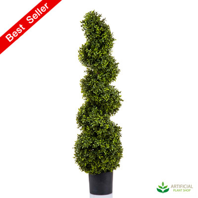 Boxwood Spiral Tree 1.2m