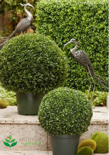 Artificial Boxwood Topiaries in pots