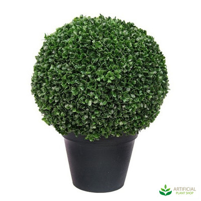 Topiary 42cm in Pot