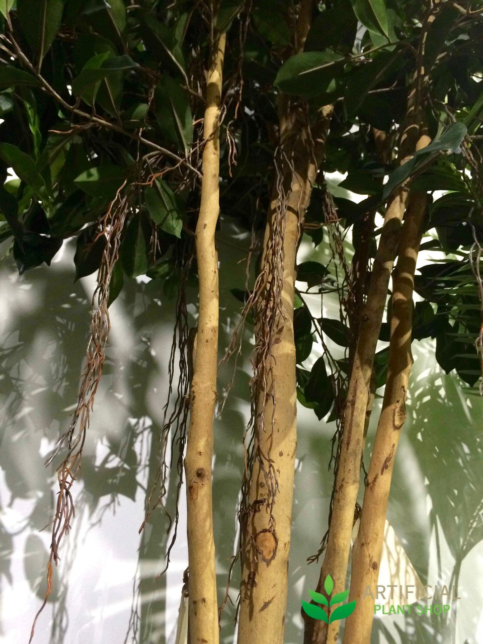 Artificial Ficus Tree Trunks
