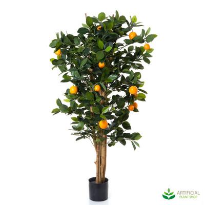 Orange Tree Premium 0.9m