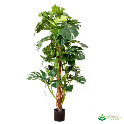Artificial Split Philo Tree 1.5m