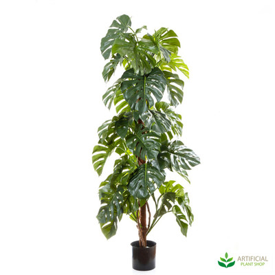 Artificial Split Philo Tree 1.8m