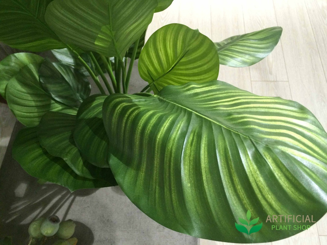 Artificial Calathea Leaves