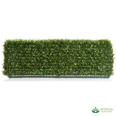 Boxwood Hedge 25cm x 95cm