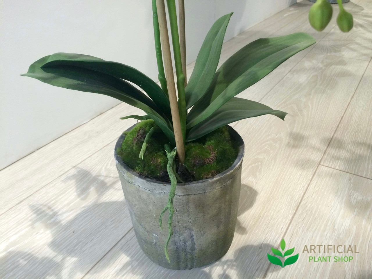 Artificial Orchid Stems in pot