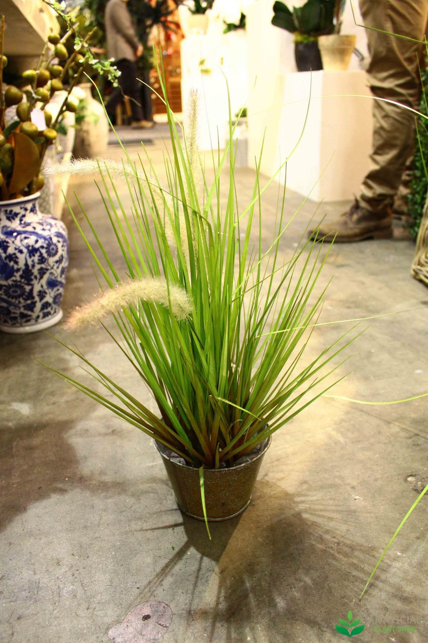 Artificial Wheat Grass Potted