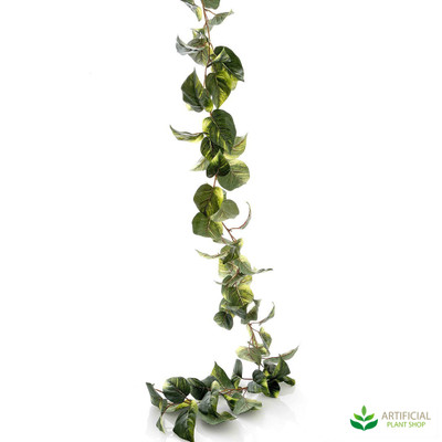 Pothos Garland 1.8m (pack of 12)