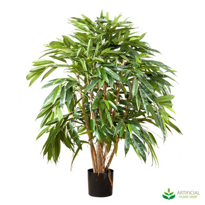 Royal Longfolia Tree 90cm