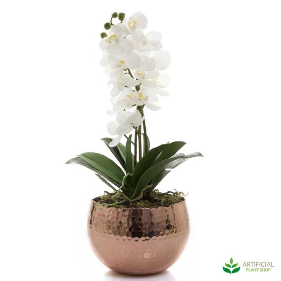 White Orchid in Copper Bowl 47cm