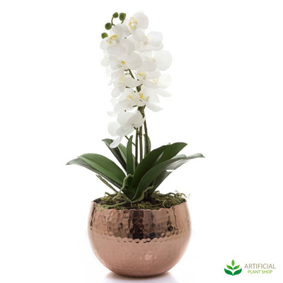White Orchid in Copper Bowl 47cm