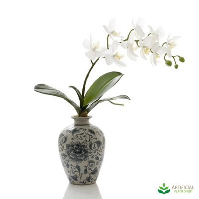White Orchid in Blue & White Vase 42cm