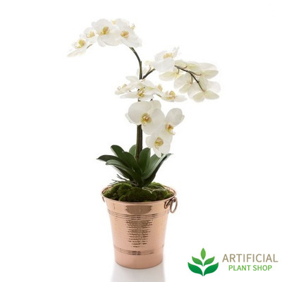 Nancy Orchid in Copper Wine Cooler 83cm