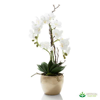 Orchid in Ceramic Gold Pot 60cm