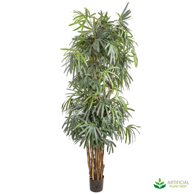 Artificial Raphis Palm 2.4m