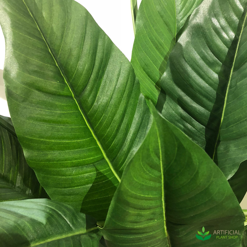 Artificial Spathiphyllum leaves