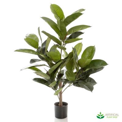 Rubber Plant 96cm