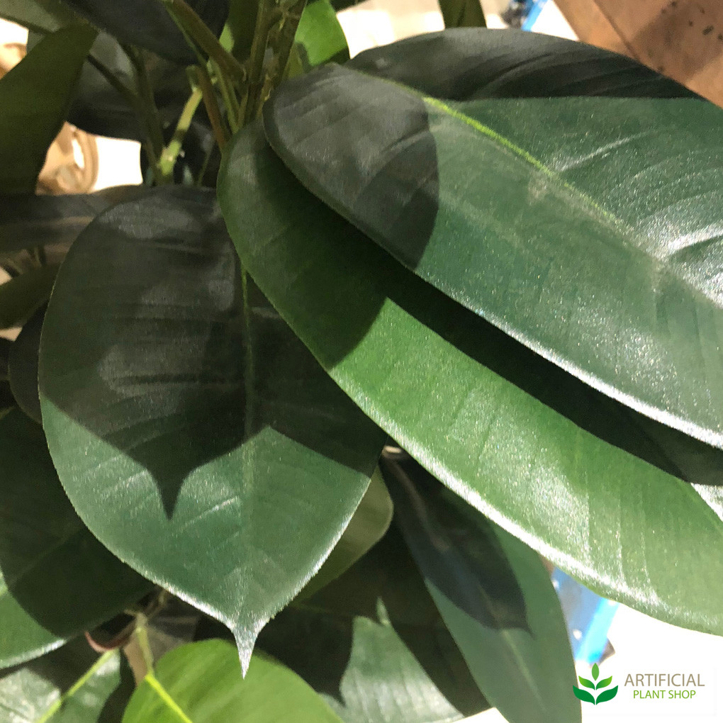 Artificial Rubber Plant Leaves
