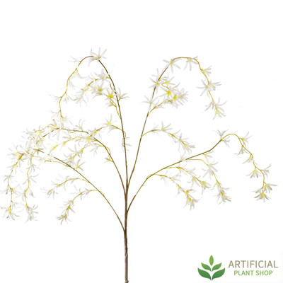 Cream Spider Orchid Spray 120cm (pack of 6)