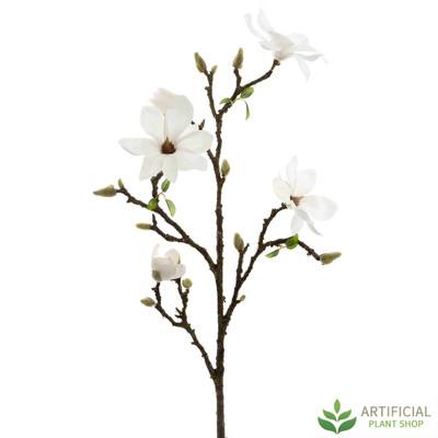 White Magnolia Branch 108cm