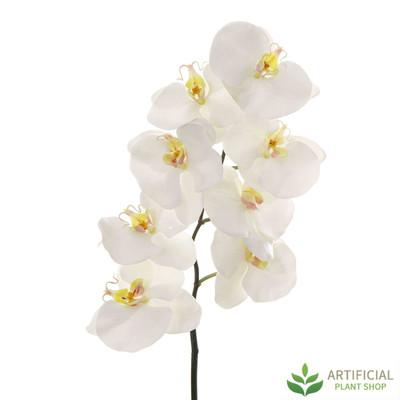 White Phalaenopsis Orchid Spray 100cm (pack of 6)
