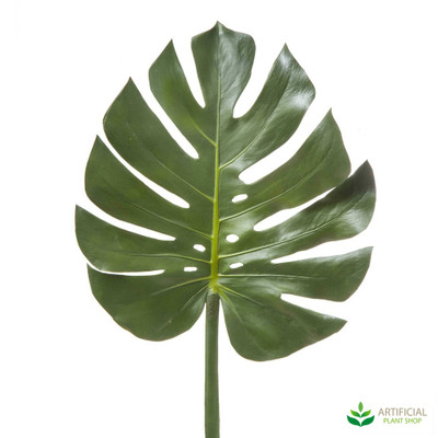 Monsteria Leaf 94cm