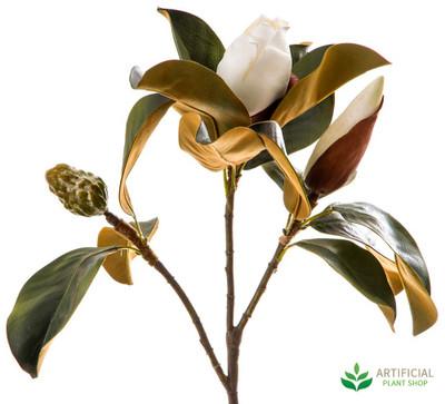 White Magnolia Bud 60cm