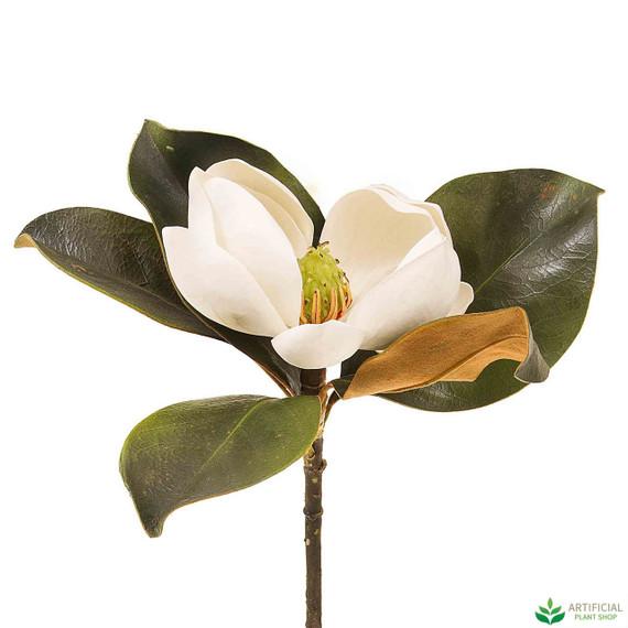 White Magnolia Stem 60cm
