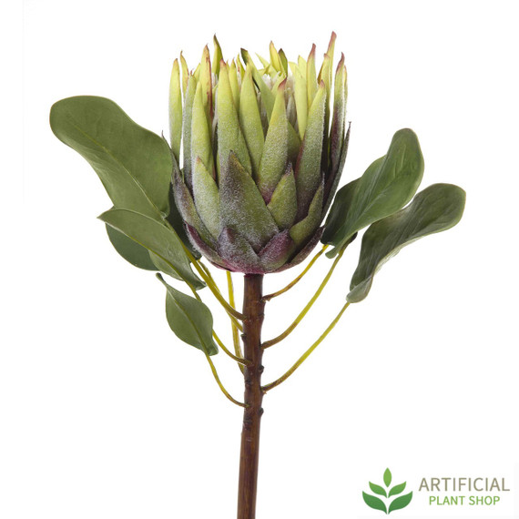 Artificial Flower - Green King Protea 60cm