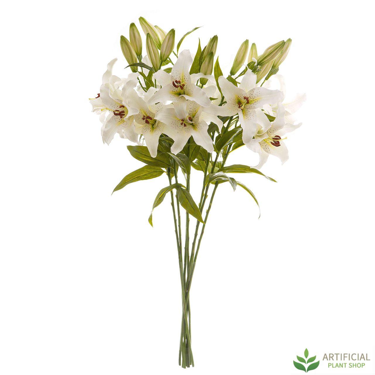 White Robrum flower bundle