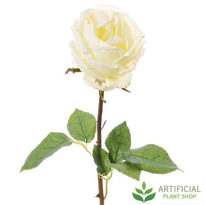 White York Rose Stem 52cm