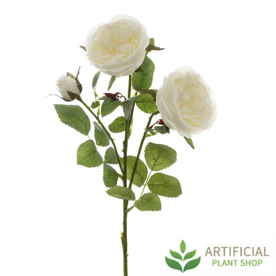 White English Rose Stem 55cm