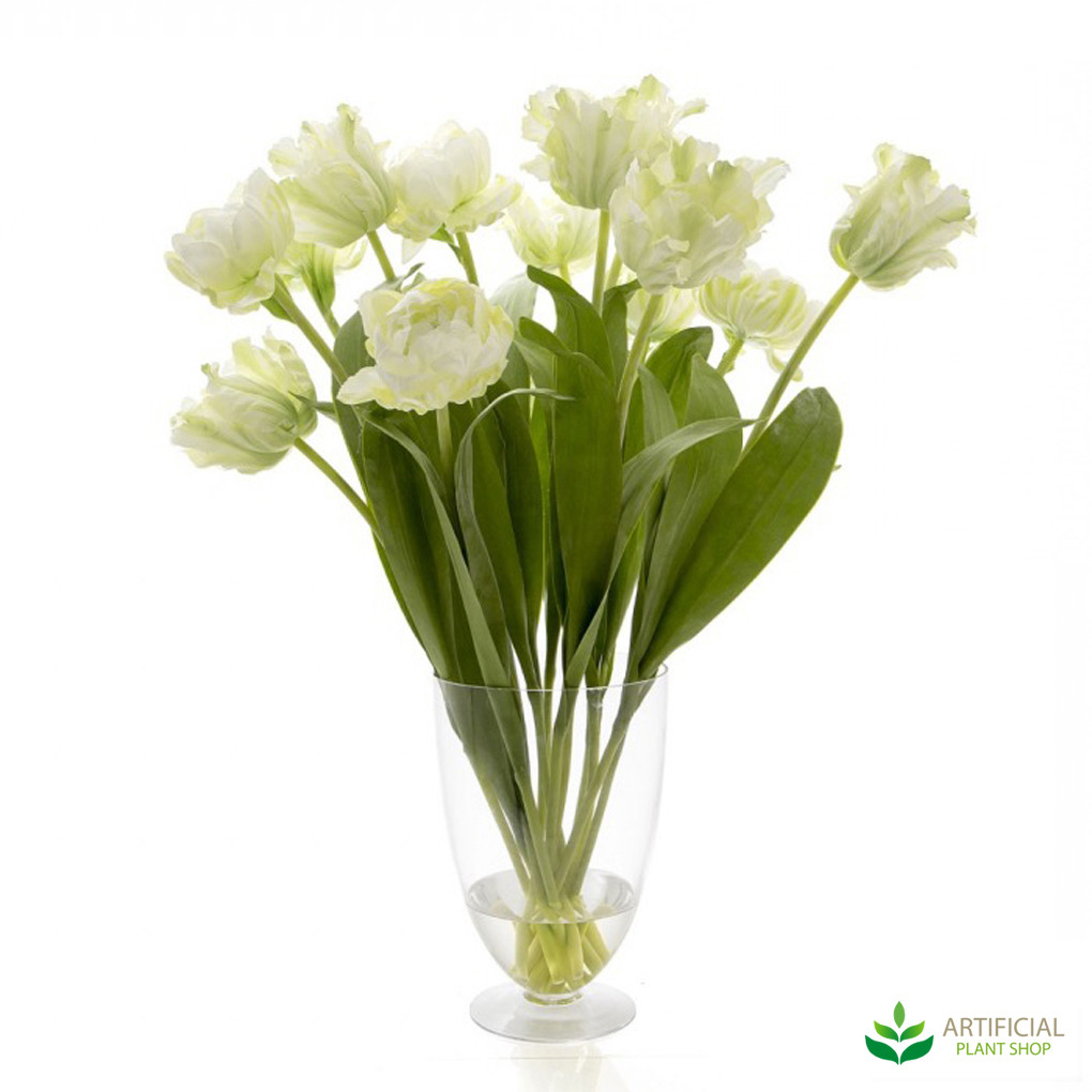 White parrot tulips in glass vase 75cm