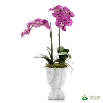Alice Orchid in Vase 80cm
