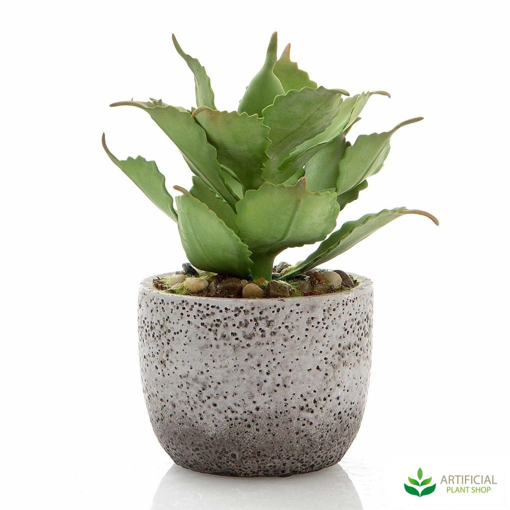 Artificial Agave in concrete pot 23cm
