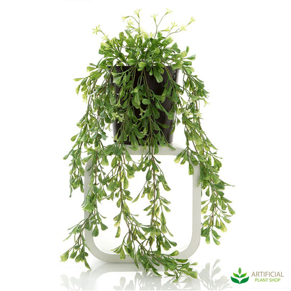 artificial hanging boxwood vine potted 74cm