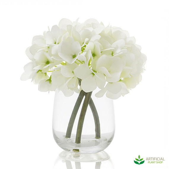 white hydrangea in glass vase 18cm