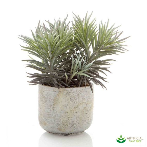 artificial needle succulent 23cm
