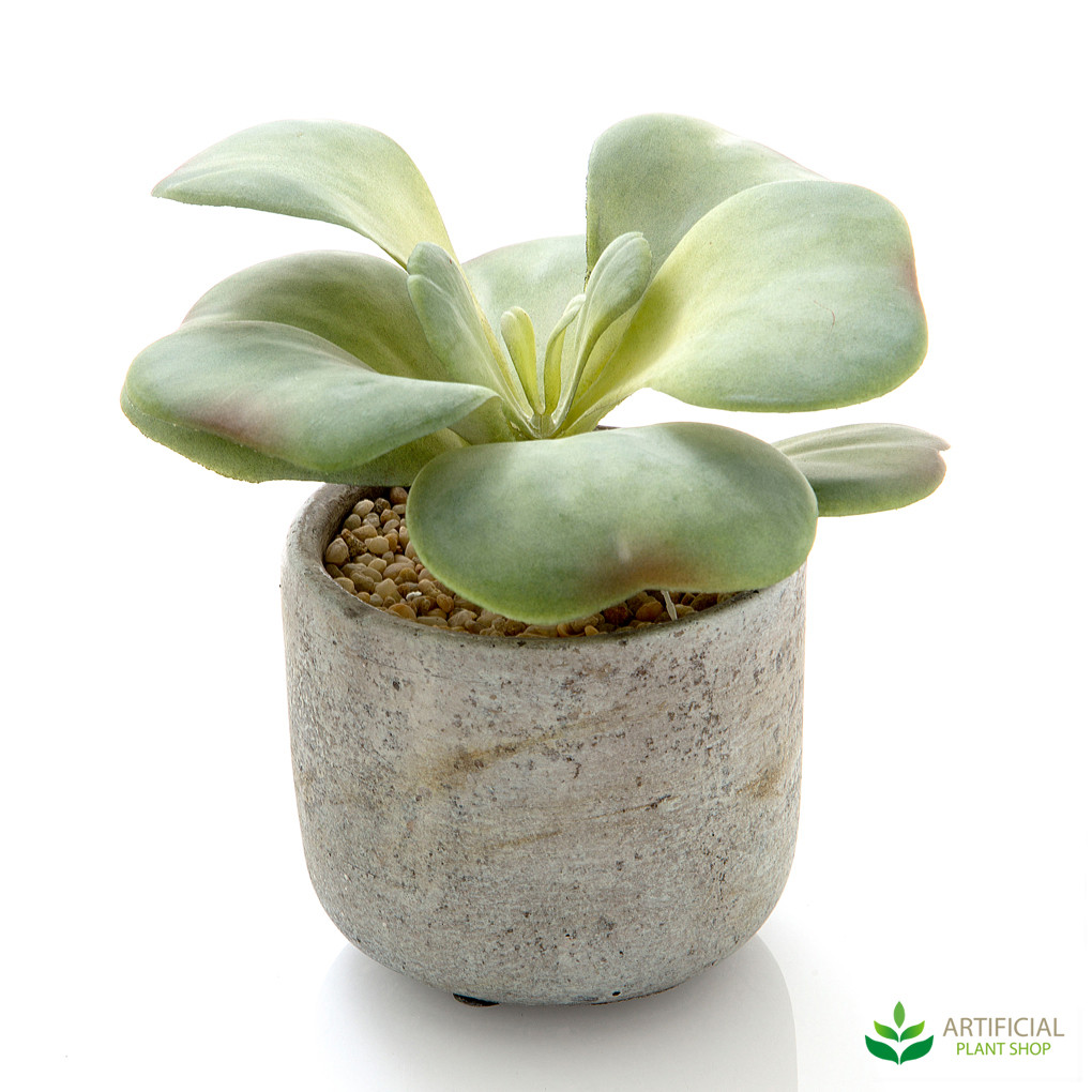 artificial succulent in pot 17cm