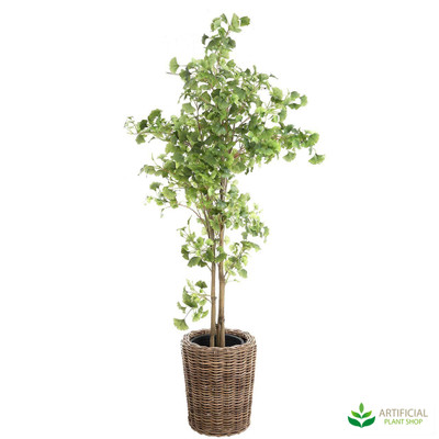 artificial Ginko Tree with pot 2m