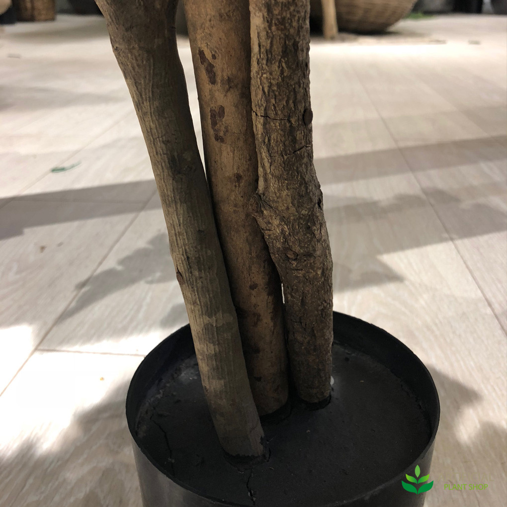 artificial fig tree trunk
