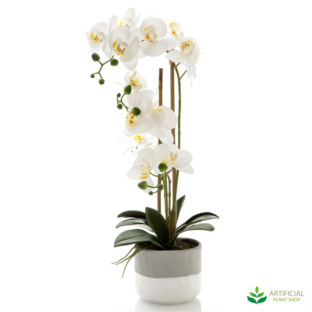 fake orchids in grey two-tone pot 55cm
