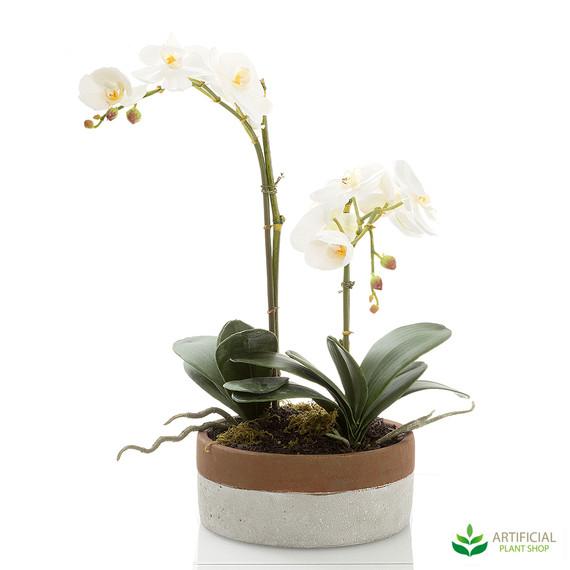 artificial phal orchid arrangement in two-tone pot